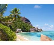 Puzzle Trópikus part, Seychelles