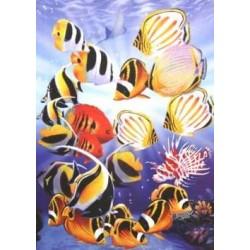 Puzzle Trópikus halak