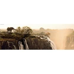 Puzzle Elefánt a zátony tetején