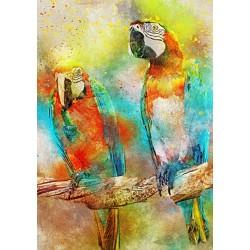 Puzzle Papagájok