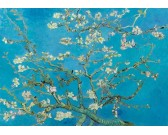 Puzzle Virágzó mandulafa