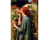 Puzzle A rózsa lelke
