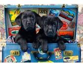 Puzzle Fekete labradorok