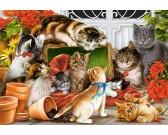 Puzzle Játszó kiscicák