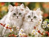 Puzzle Perzsa cicák - GYEREK PUZZLE