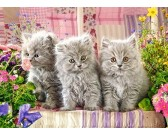 Puzzle Három kismacska - GYEREK PUZZLE