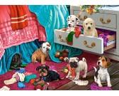 Puzzle Kölyökkutyák a hálószobában - GYEREK PUZZLE