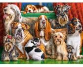 Puzzle Kutyaklubb