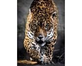Puzzle Sétáló jaguár
