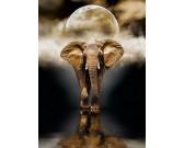 Puzzle Elefánt