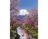 Puzzle Fuji, Japán