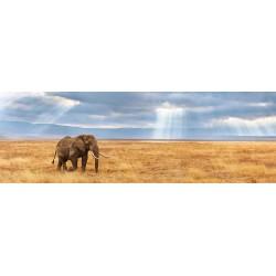 Puzzle Elveszett elefánt - PANORAMATIKUS PUZZLE