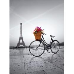 Puzzle Romantikus promenád Párizsban