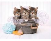 Puzzle Három cica