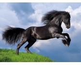 Puzzle Fekete ló