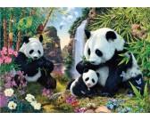 Puzzle Pandák