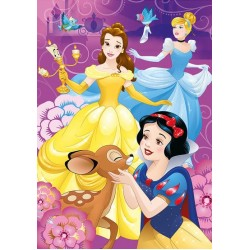 Puzzle Szivárványos hercegnők - GYEREK PUZZLE