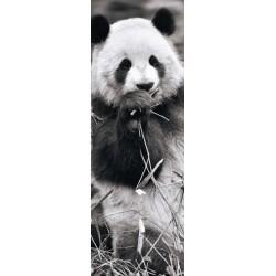 Puzzle Pandák a fűben - PANORAMATIKUS PUZZLE