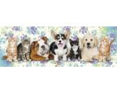 Puzzle Kutyák és macskák - GYEREK PUZZLE
