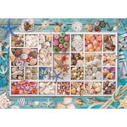 Puzzle Kagyló gyűjtemény