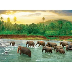 Puzzle Elefántok a folyóban