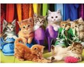 Puzzle Macskák a szekrényben