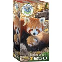 Puzzle Piros pandák