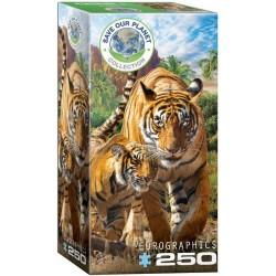 Puzzle Tigrisek
