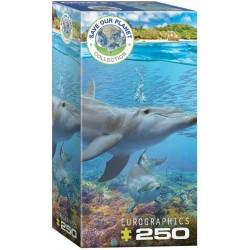 Puzzle Delfinek
