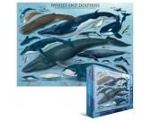 Puzzle Bálnák és delfinek