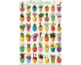 Puzzle Kaktuszok és pozsgások