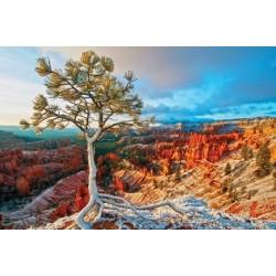 Puzzle Grand Canyon, téli napsugár