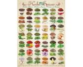 Puzzle Gyógynövények és fűszerek