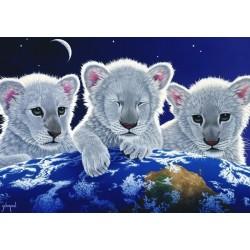 Puzzle Három oroszlánkölyök