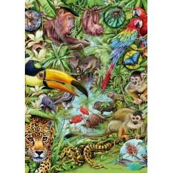 Puzzle Esőerdő