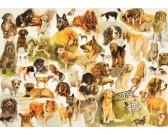 Puzzle Kutyaposzter