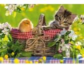 Puzzle Piknikre készülőben