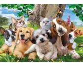 Puzzle Kutyák és macskák