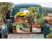 Puzzle Virágok az autóban