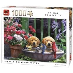 Puzzle Szomjas kiskutyák