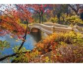 Puzzle Séta a Central Park-ban