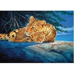 Puzzle Leopárdok