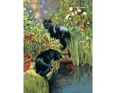 Puzzle Két fekete macska
