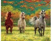 Puzzle Három ló