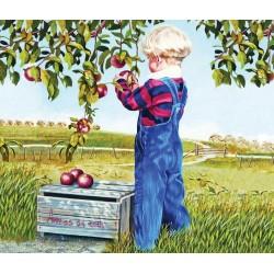 Puzzle Az alma szüretelése