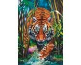 Puzzle Tigris