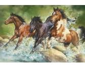 Puzzle Vad lovak