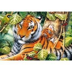 Puzzle Két tigris