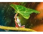 Puzzle Zöld esernyő