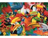 Puzzle Színes madarak